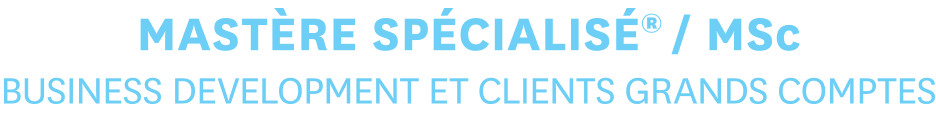 MASTERE SPECIALISE® / MSc - Business Development et Clients Grands Comptes